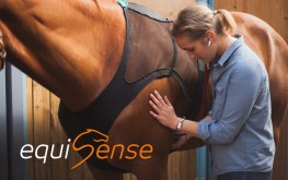 equisense-care-body