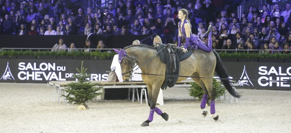 salon cheval paris fei voltige
